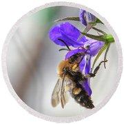 Bee On Purple Flower Round Beach Towel
