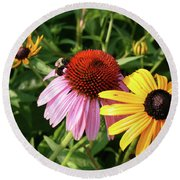 Bee On The Cone Flower Round Beach Towel
