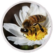 Bee On The Flower Round Beach Towel