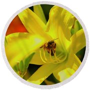 Bee On Yellow Lilly Round Beach Towel