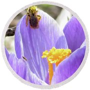 Bee Pollen Round Beach Towel