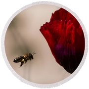 Bee Right Profile Flying To Red Flower Round Beach Towel