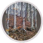 Round Beach Towel featuring the photograph Beech Trees by Melinda Blackman
