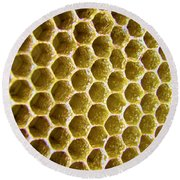 Bee's Home Round Beach Towel