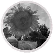 Round Beach Towel featuring the digital art Bees On A Sunflower by Chris Flees