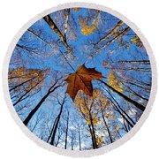 Round Beach Towel featuring the photograph Before The First Snow by Mircea Costina Photography