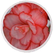 Round Beach Towel featuring the photograph Begonia Beauty by Lora Lee Chapman
