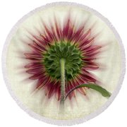 Behind The Sunflower Round Beach Towel
