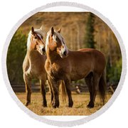 Belgian Draft Horses Round Beach Towel