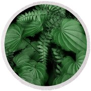 Below The Canopy Round Beach Towel