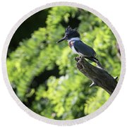 Round Beach Towel featuring the photograph Belted Kingfisher by Gary Hall