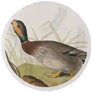 Bemaculated Duck Round Beach Towel