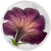 Round Beach Towel featuring the photograph Beneath A Dreamy Petunia by David and Carol Kelly