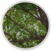 Beneath The Boughs Round Beach Towel