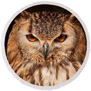 Bengal Owl Round Beach Towel
