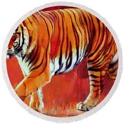 Bengal Tiger  Round Beach Towel by Mark Adlington