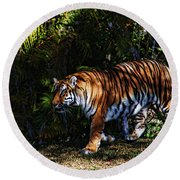 Bengal Tiger - Rdw001072 Round Beach Towel