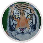 Bengal Tiger Round Beach Towel by Stacy C Bottoms
