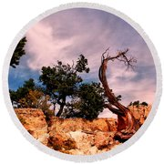 Bent The Grand Canyon Round Beach Towel by Tom Prendergast