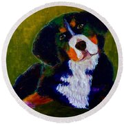 Round Beach Towel featuring the painting Bernese Mtn Dog Puppy by Donald J Ryker III