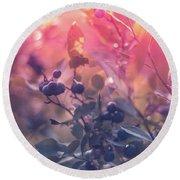 Berries In The Sun Round Beach Towel by Stefanie Silva