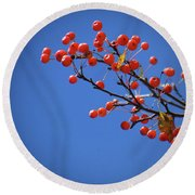 Berry Branch Round Beach Towel