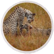 Best Of Friends Round Beach Towel by Nichola Denny