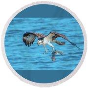 Best Osprey With Fish In One Talon Round Beach Towel