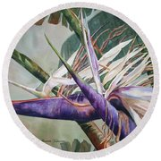 Betty's Bird - Bird Of Paradise Round Beach Towel