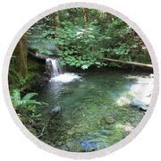 Round Beach Towel featuring the photograph Beyond The End Of The Trail At Limpy Creek by Marie Neder