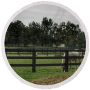 1004 - Beyond The Fence White Horse Round Beach Towel