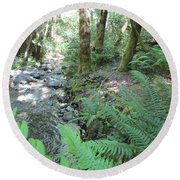 Round Beach Towel featuring the photograph Beyond The Ferns by Marie Neder
