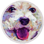 Round Beach Towel featuring the painting Bichon Frise Face by Robert Phelps