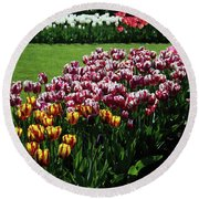 Multicolor Tulips Round Beach Towel by Ana Mireles