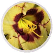 Bicolored Lily Round Beach Towel by Jean Noren