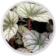 Big Begonia Leaves Round Beach Towel by Nareeta Martin
