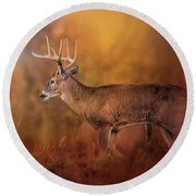 Big Buck In Autumn White Tailed Deer Art Round Beach Towel