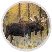 Big Bull Washakie Round Beach Towel by Yeates Photography