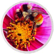Big Bumble On Pink Round Beach Towel