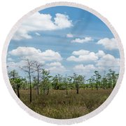 Round Beach Towel featuring the photograph Big Cypress Marshes by Jon Glaser