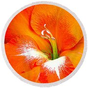 Big Glad In Bright Orange Round Beach Towel