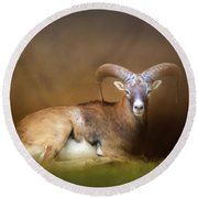 Big Horn Sheep Round Beach Towel by Marion Johnson