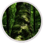 Big Moody Tree In Forest Round Beach Towel