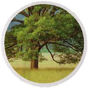Big Oak Round Beach Towel