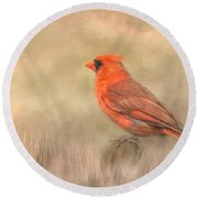 Big Red Round Beach Towel by Steven Richardson