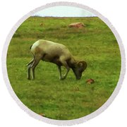 Round Beach Towel featuring the digital art Bighorn Sheep Grazing by Chris Flees