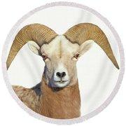 Round Beach Towel featuring the photograph Bighorn Sheep Ram by Jennie Marie Schell
