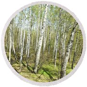 Birch Forest In Spring Round Beach Towel