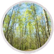 Birch Forest Spring Round Beach Towel