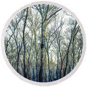 Birch Tree Woodland Round Beach Towel by Lana Enderle